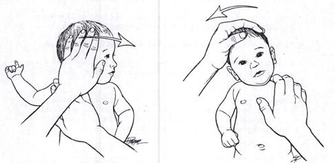 пример массажа шеи грудничка
