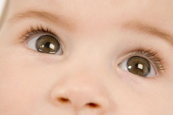 Карие глаза малыша