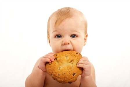 Малыш ест огромное печенье