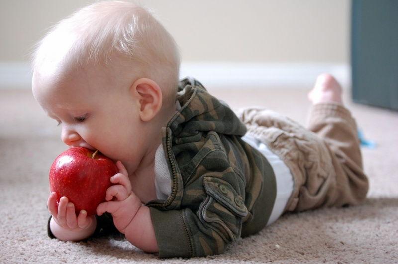 ребенок грызет яблоко