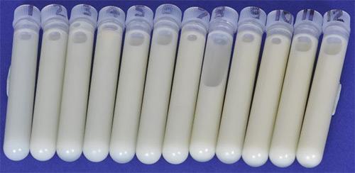 молоко в пробирках